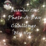 December Photo-A-Day Challenge #2: 2012 Events I Won't Forget