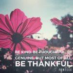 Thankful Thursday: Of Gratitude + Thankfulness