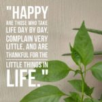 Thankful Thursday: Of Gratitude + The Little Things In Life