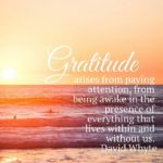 Thankful Thursday: Of Gratitude + Being Awake
