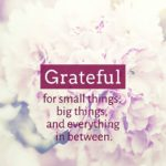 Thankful Thursday: Of Gratitude + Everything In Between