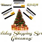 Holiday Shopping Spree Giveaway {US only}