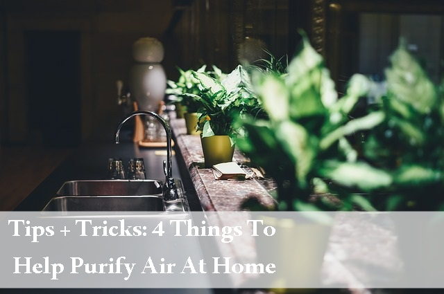 tips and tricks, home and garden, health, homemaking, home, home improvement, cleaning at home