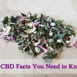 Health: 10 CBD Facts You Need to Know