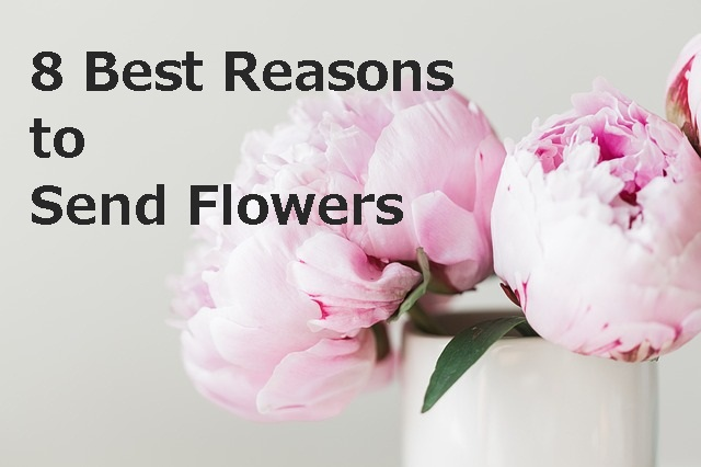 mum's thoughts, tips and tricks, flowers, gift ideas