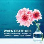 Thankful Thursday: Of Life + Gratitude