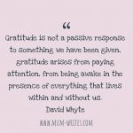 Thankful Thursday: Of Gratitude + Paying Attention
